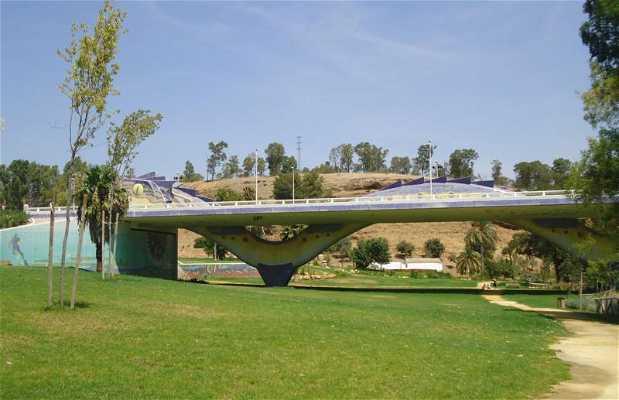 The Dragon Bridge