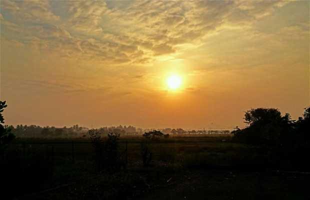 Bagan Serai