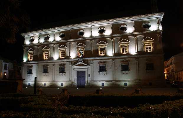 Palacio Vázquez De Molina O De Las Cadenas