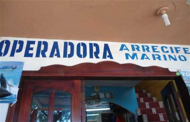 Agencia Operadora Recife Marino