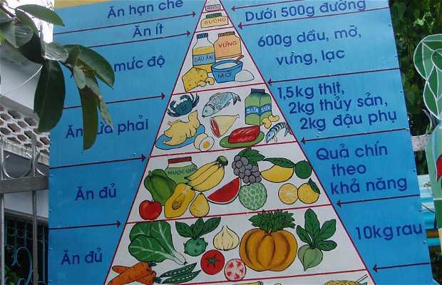 Escuelas vietnamitas