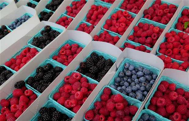 Beverly Hills Farmer's Market