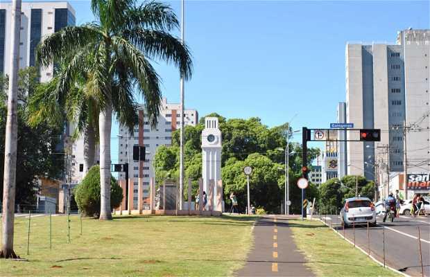Avenue Afonso Pena