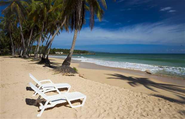 Baoba beach club
