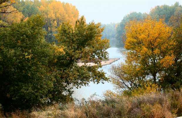 Réserve Naturelle Sotos del Ebro