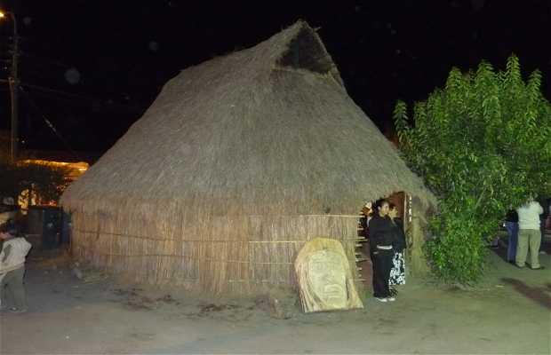Foire Mapuche en Villarrica