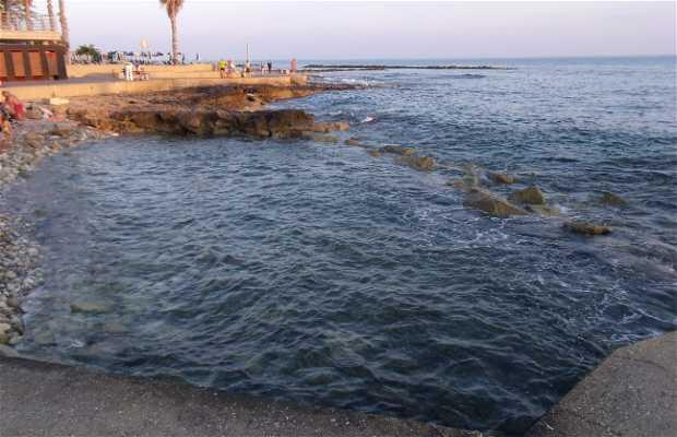 Playa Municipal de Paphos