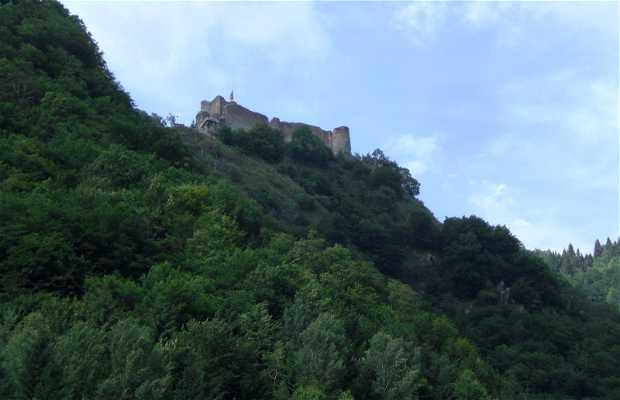 Château de Poienari