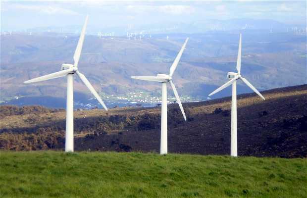 Parc éolien Capelada