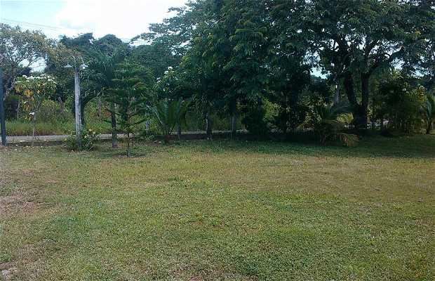 Chaguaramal