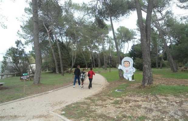 Jardin del parque