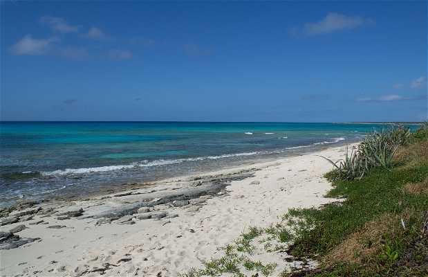 Malcolm Road Beach