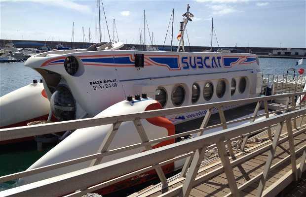 Subcat Paseo En Submarino Catamarán