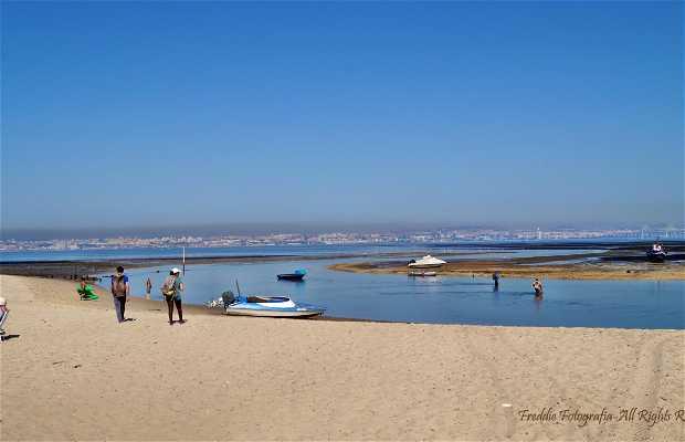Praia Fluvial do Samouco