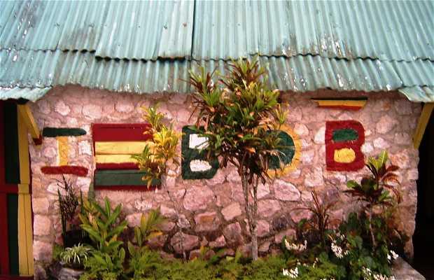 Excursiones Jamaica