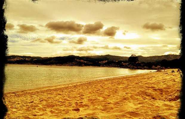 Areabrava Beach