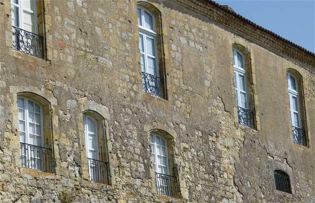 Castillo Saint Puy