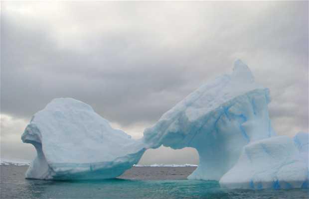 Polo Sur, Admunsen