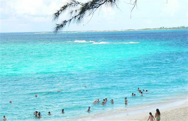 Plage de Paradise Island