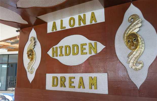 Alona Hidden Dream