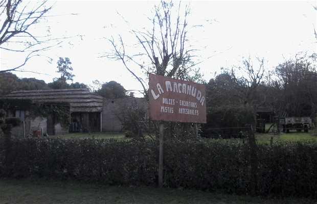 La Macanuda