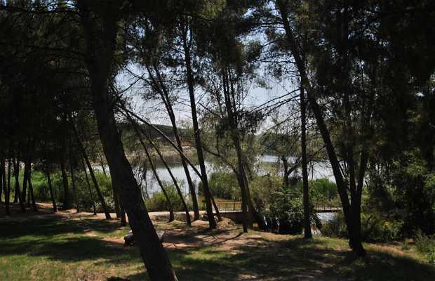 La Grajera Park