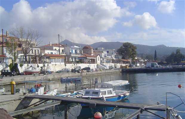 Egina