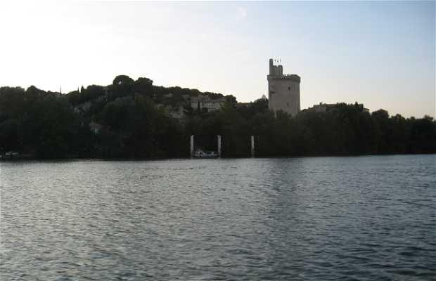 Bateau des Doms