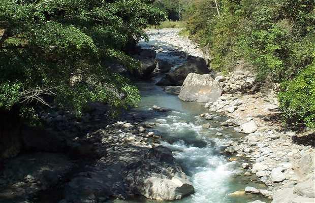 Parque Ecológico Río Saguaz