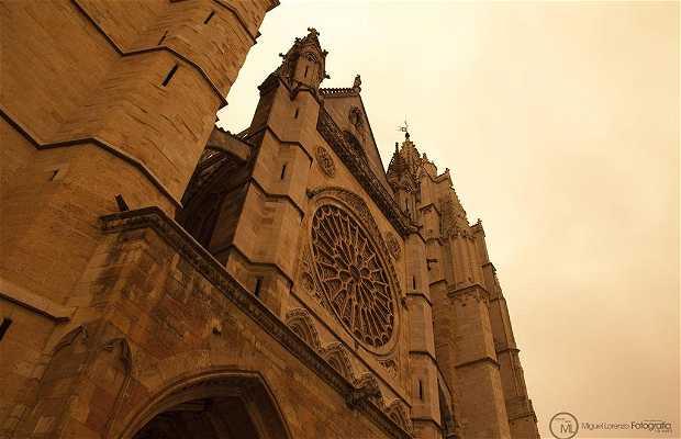La Cattedrale di León