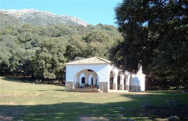 """Área Recreativa """"Los Llanos del Campo"""""""