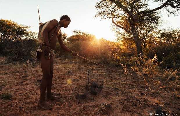 Caminhada com um Bushman em Dqae Qare