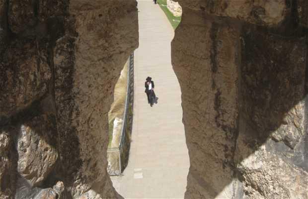 Antiguos muros de Jerusalén