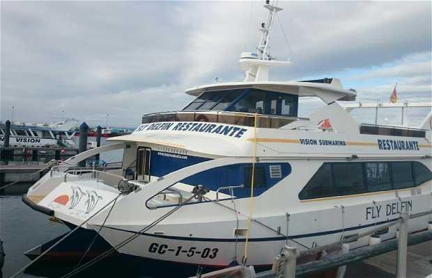 Cruceros do Ulla - Fly Delfín