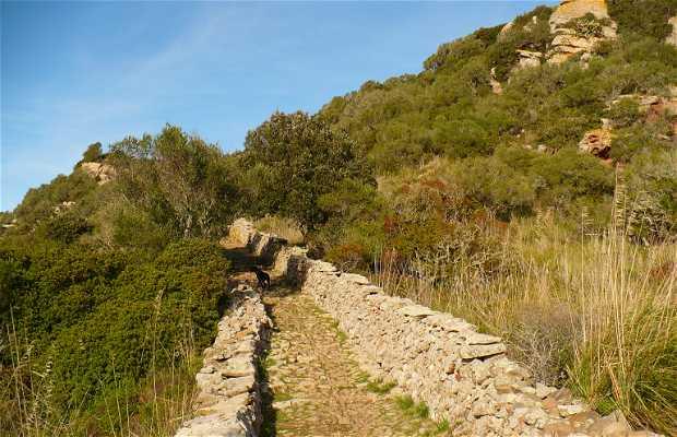 Castell de Sant Agueda