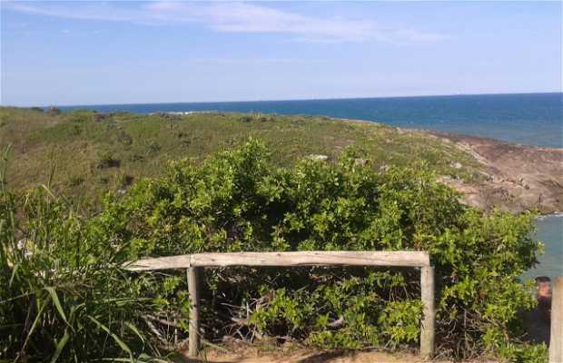 Trilha para Praia da Concha