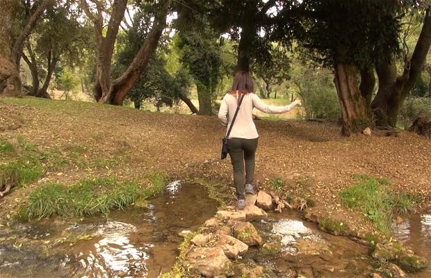 Río Ain Vitel