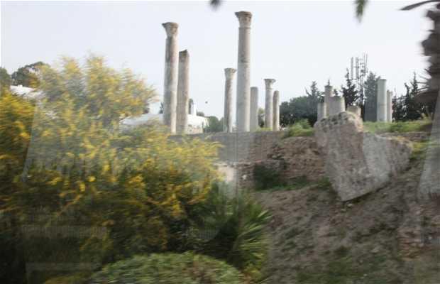 Byrsa Hill