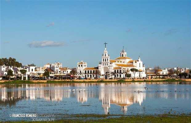 Aires de Doñana - La choza del Rocio