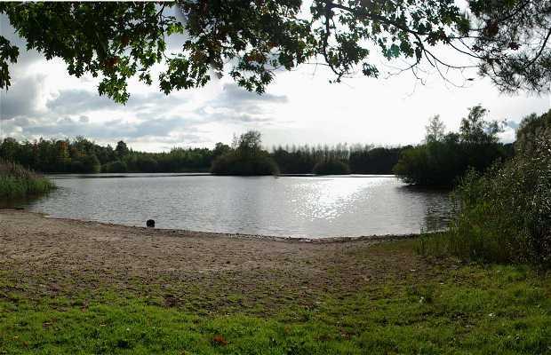 Lake Bankven