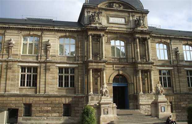 Museo de Historia Natural de Rouen