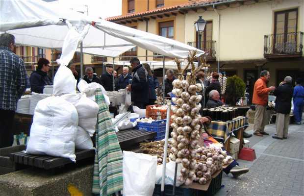 Feria de San Martin
