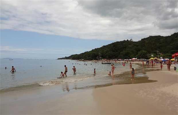 Praia de Daniela