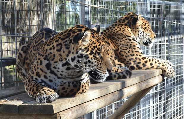 MundoPark - Zoo de Sevilla