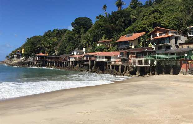 Playa del Sorocotuba