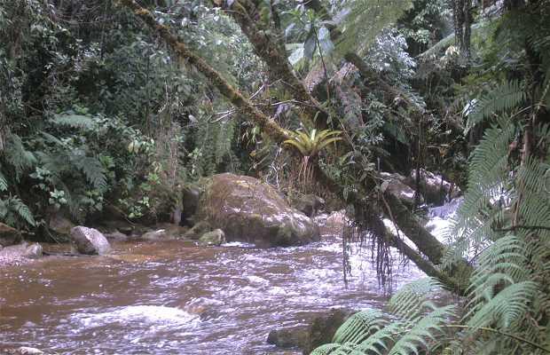 Nature of Boyacá