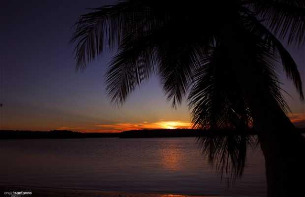 Ilha de Canavieiras