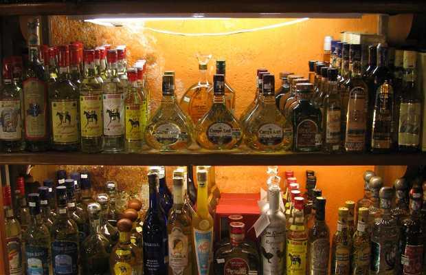 Tequilería Casa Tequila