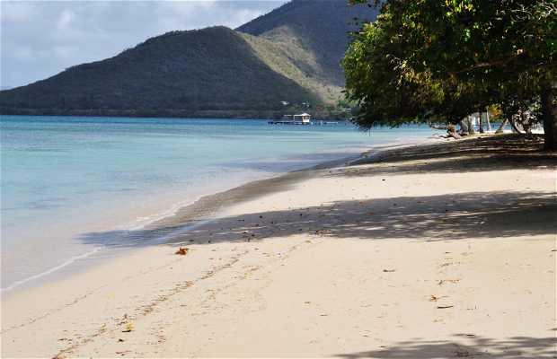 Pointe Marin Martinica