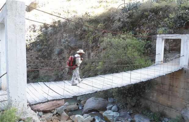 Rio Capillan